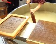 Papiermuseum Alte Dombach