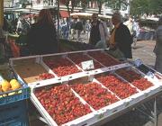 Noch immer gibt es Erdbeeren