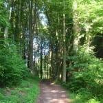 Wandern in Hebborn