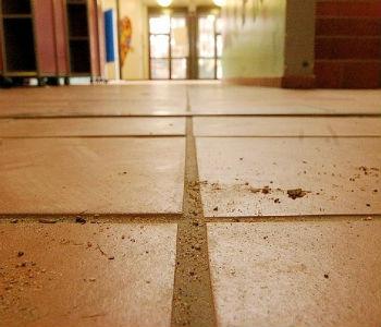 Die Stadt, der Müll, der Dreck: Gymnasien klagen