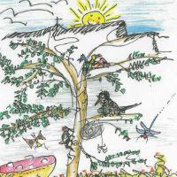 Kletterwald bild sonne