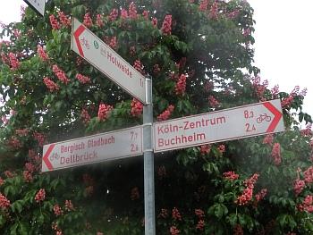 An der Isenburg ist die halbe Strecke geschafft