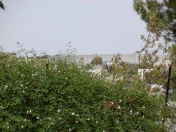 Die Mauer zwischen Israel und Palästina