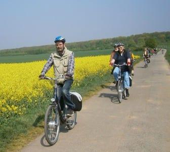 ADFC Radfahrer Rapsfeld
