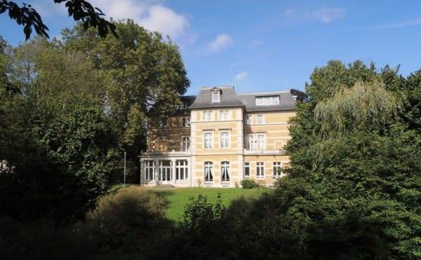 Die Platane vor der Villa Zanders