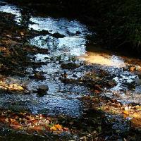 Eine Herbstwanderung zur Dhünn