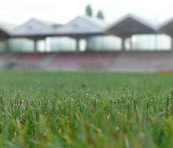 Stadt stundet SV 09 Beitrag für Belkaw-Arena