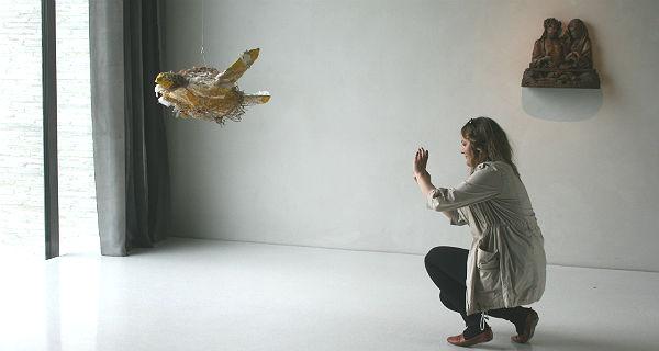 Fliegende Schildkröte, Valerie MenzelFliegende Schildkröte, Valerie Menzel
