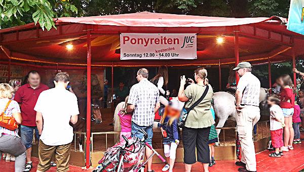 Kirmes 2014 Pony kostenlos 600
