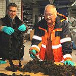 Stadt investiert Million im Kampf gegen Feuchttücher