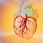 Herzinfarkt: EVK will die Zeitbomben entschärfen