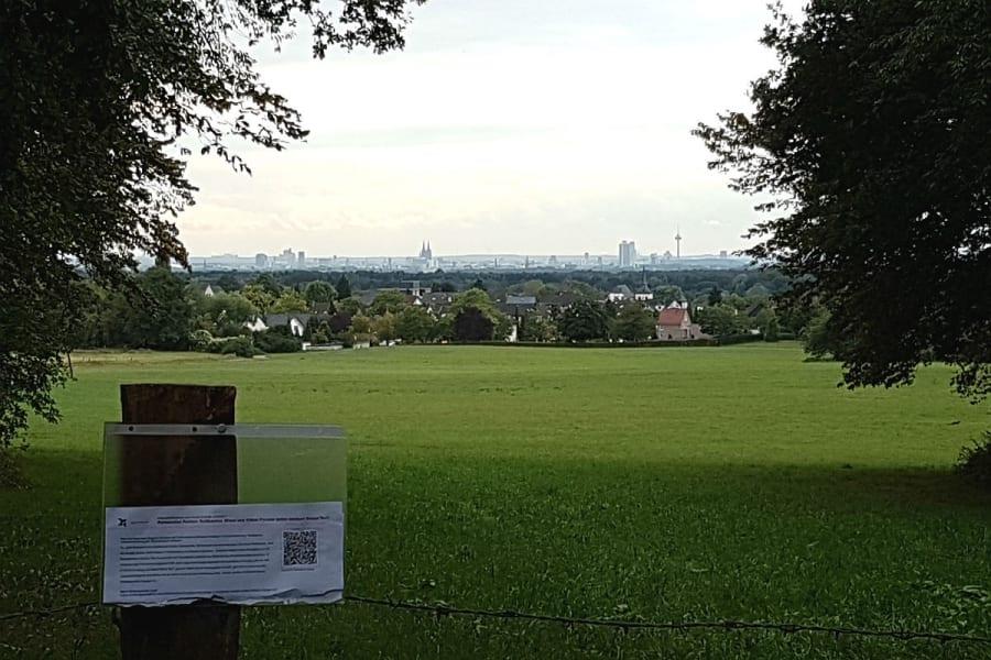 Das Kölner Fenster: Blick über die Nussbaumer Wiese und Paffrath nach Köln