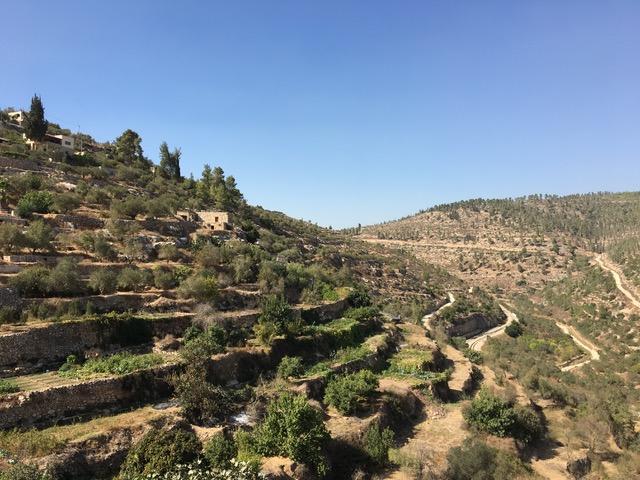 Terrassenanlagen von Battir