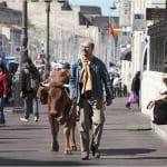 """Filmfestival """"Nahaufnahme"""" startet mit der Kuh Jaqueline"""