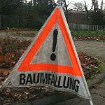 Margaretenhöhe: Vollsperrung wegen Baumfällung