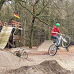 """Schonfrist für Biker im """"Nutbush Forest"""""""