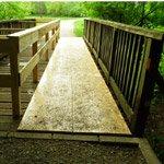 Die Brücke am Mutzbach – Update
