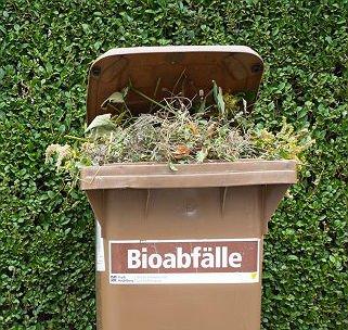 Reinigung der Biotonnen startet Montag