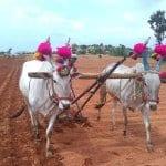Vortrag im Himmel un Ääd: 1001 Eindrücke aus Indien