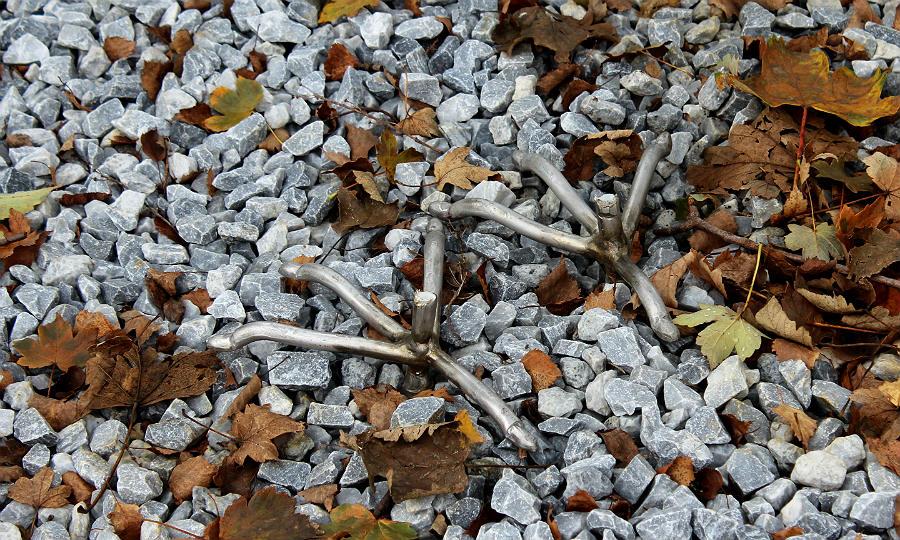Von den drei Kranichen blieben im Buchmühlenpark in Bergisch Gladbach nur die Füße zurück