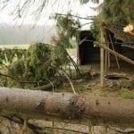 Stürmischer Jahresbeginn für den Ponyhof Sonnenschein