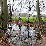 Fakten zur Gewässergüte müssen auch GL alarmieren