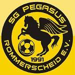 Pegasus gewinnt 1. Finalspiel um deutsche Meisterschaft