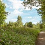 Wandern in Naturschutzgebieten des RBK