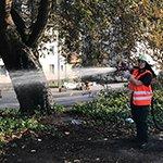 Freiwillige Feuerwehr rettet die Bäume