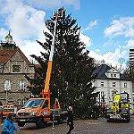 Weihnachtsbaum: Kurze Anreise mit Schwierigkeiten