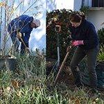 Projektgruppe bringt St. Engelbert zum Blühen