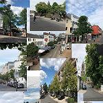Das Bündnis für Bensbergs Bäume breitet sich aus