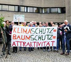 Bensberger Baum-Freunde sehen Kritik bestätigt