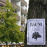 """Ein """"Hilferuf für die Bäume von Bensberg"""""""